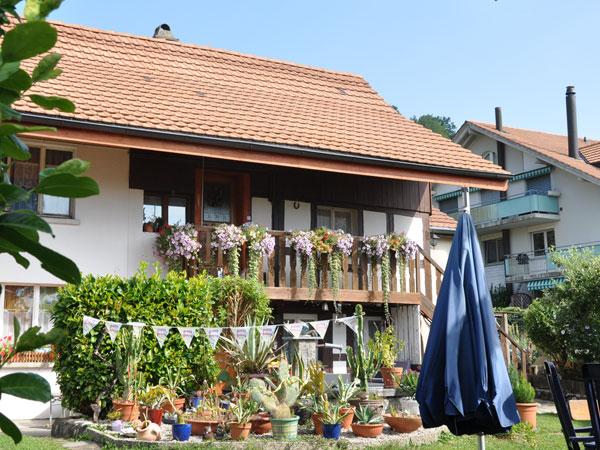 MFH in Meinisberg